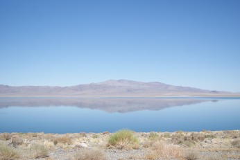 Surreal Colors, Walker Lake, NV photo credit Diana Serafini ( 4)