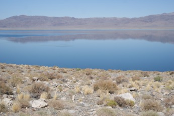 Surreal Colors, Walker Lake, NV photo credit Diana Serafini ( 7)