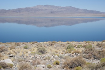 Surreal Colors, Walker Lake, NV photo credit Diana Serafini ( 12)
