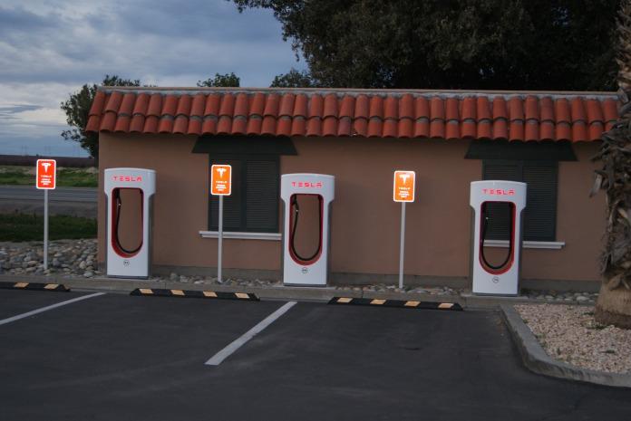 Tesla by Diana Serafini (1)